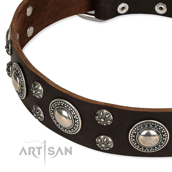 Daily walking decorated dog collar of top notch full grain leather