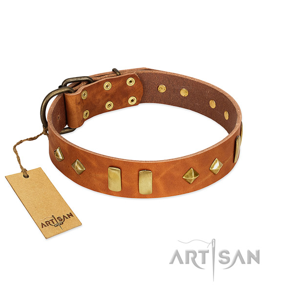 Fancy walking reliable natural leather dog collar with embellishments