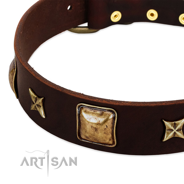 Reliable fittings on genuine leather dog collar for your four-legged friend