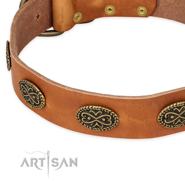 Awesome full grain leather collar for your beautiful dog