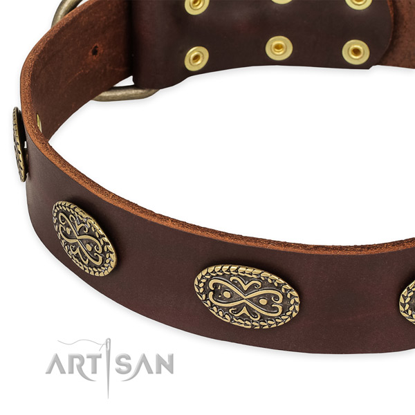 Stylish design genuine leather collar for your impressive canine