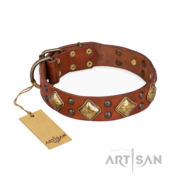 Stylish walking handmade dog collar with rust-proof fittings