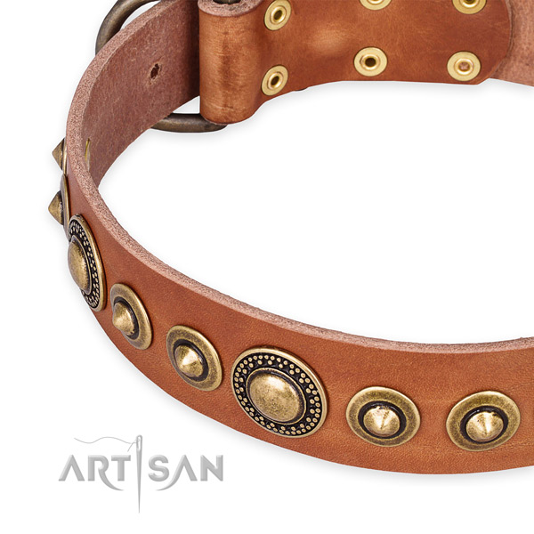 Strong full grain leather dog collar crafted for your beautiful canine