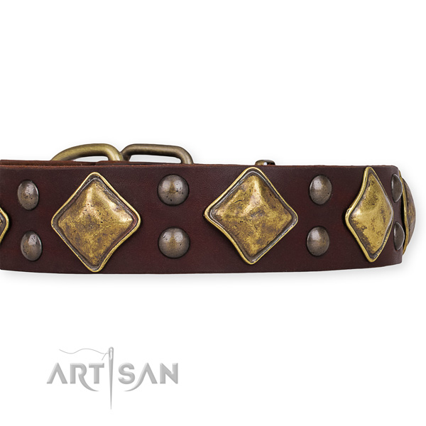 Genuine leather dog collar with exquisite strong studs