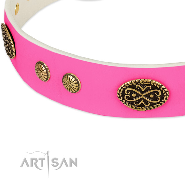 Reliable decorations on leather dog collar for your dog