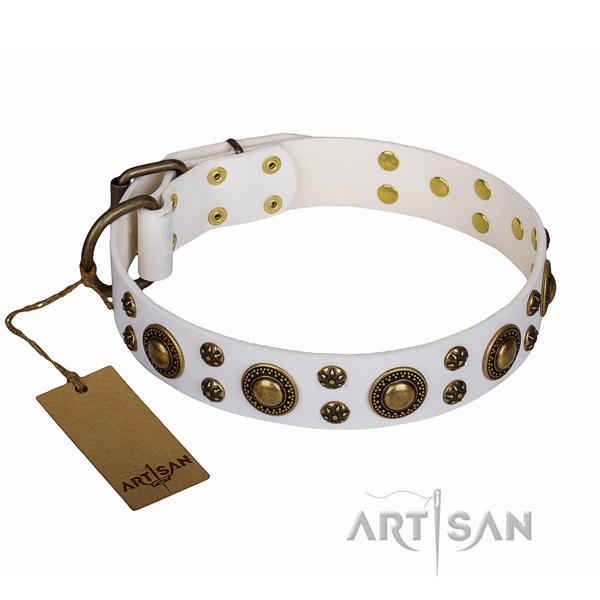 Easy wearing dog collar of top quality genuine leather with adornments
