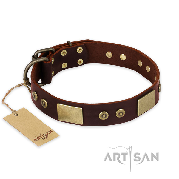 Incredible natural genuine leather dog collar for daily use