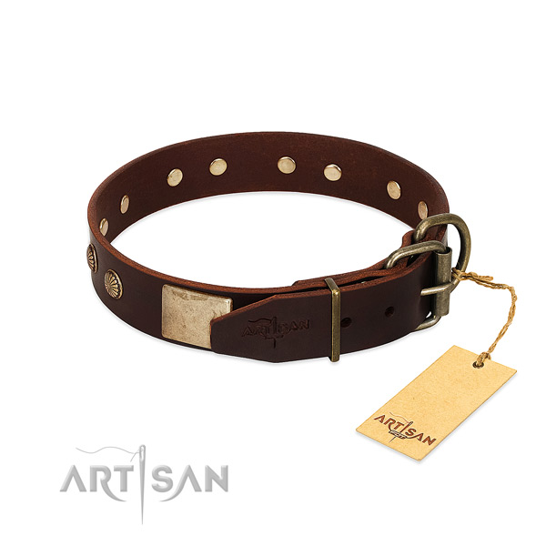 Rust resistant traditional buckle on basic training dog collar