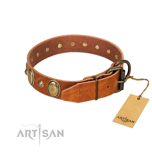 Fancy walking genuine leather dog collar