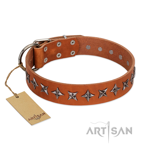 Comfy wearing dog collar of quality leather with adornments