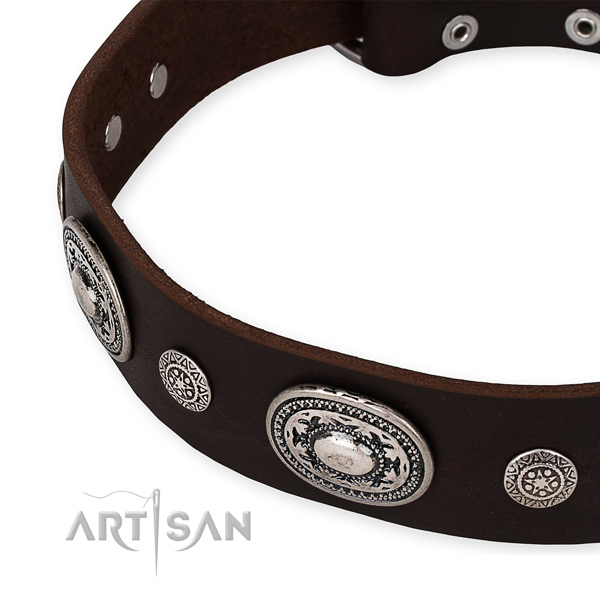Best quality leather dog collar crafted for your attractive doggie