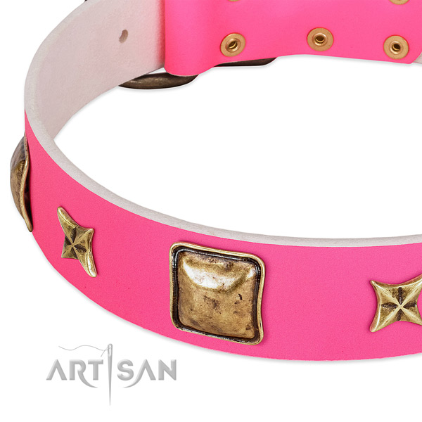 Full grain genuine leather dog collar with stylish design adornments