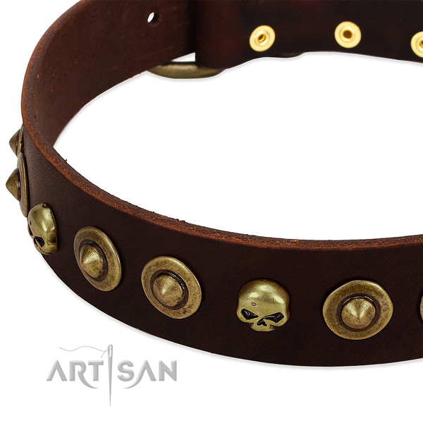 Unique embellishments on full grain natural leather collar for your four-legged friend
