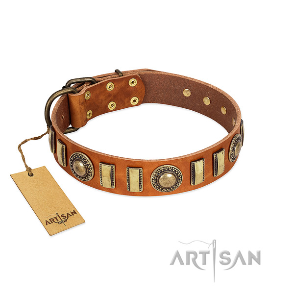 Top notch natural leather dog collar with rust resistant D-ring