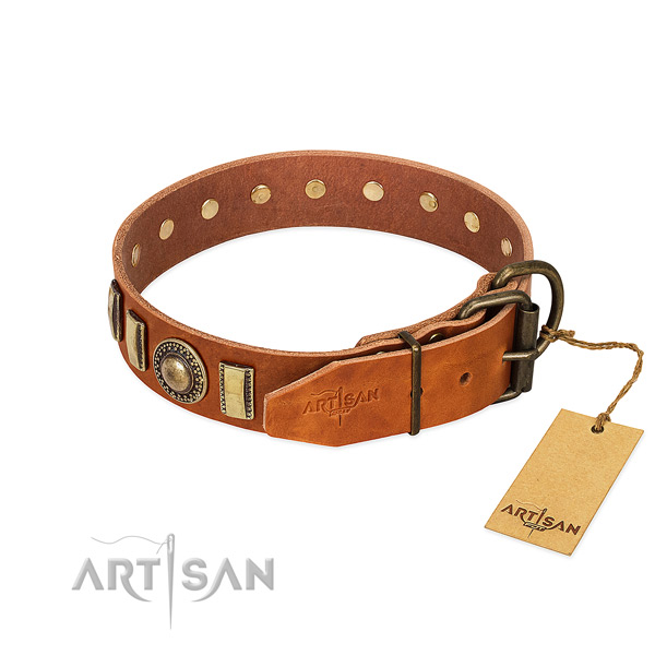 Embellished full grain natural leather dog collar with corrosion resistant D-ring