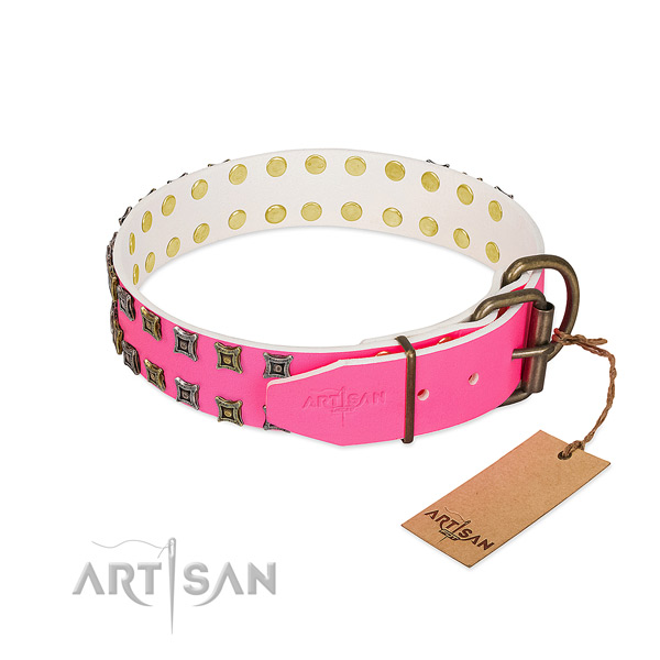 Full grain leather collar with impressive embellishments for your four-legged friend