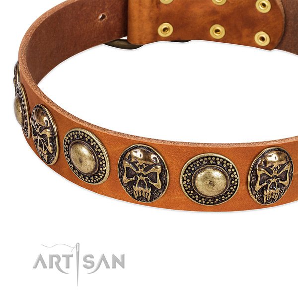 Reliable hardware on natural leather dog collar for your canine