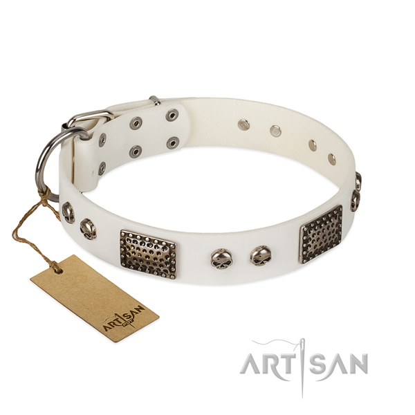 Easy wearing genuine leather dog collar for stylish walking your pet