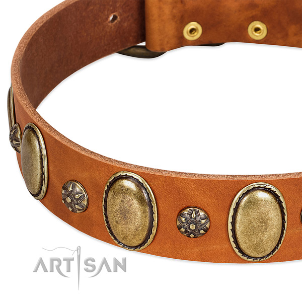 Fancy walking reliable full grain genuine leather dog collar