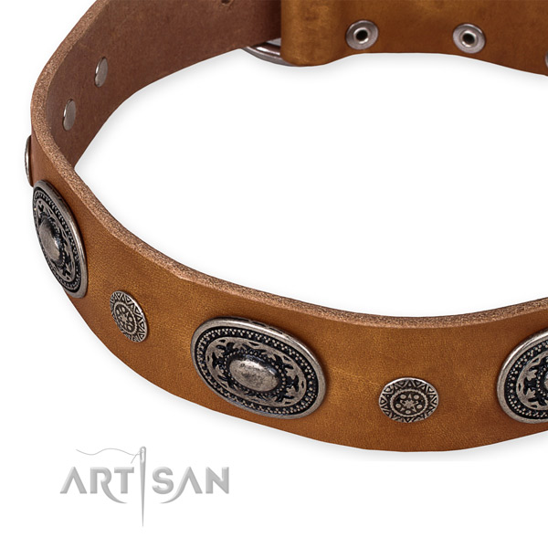 Reliable genuine leather dog collar handcrafted for your handsome dog