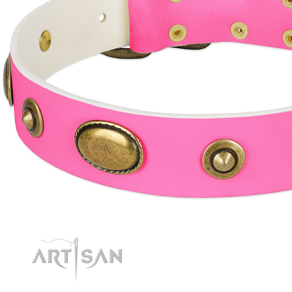 Rust-proof studs on full grain natural leather dog collar for your four-legged friend