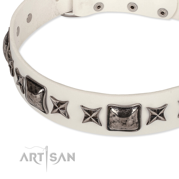 Handy use studded dog collar of strong full grain leather