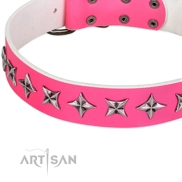 Everyday use adorned dog collar of top notch leather