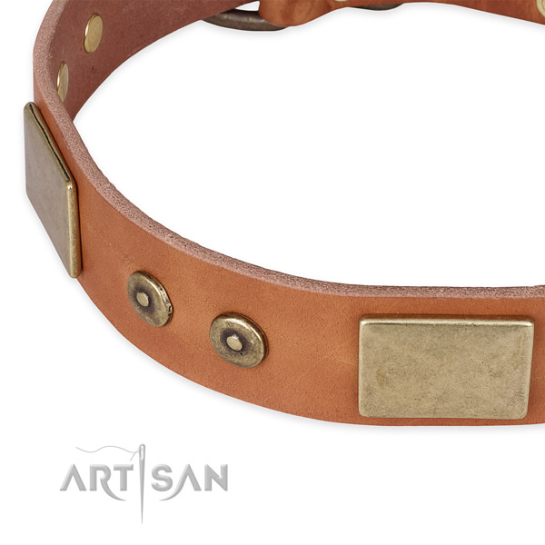 Strong fittings on full grain natural leather dog collar for your four-legged friend