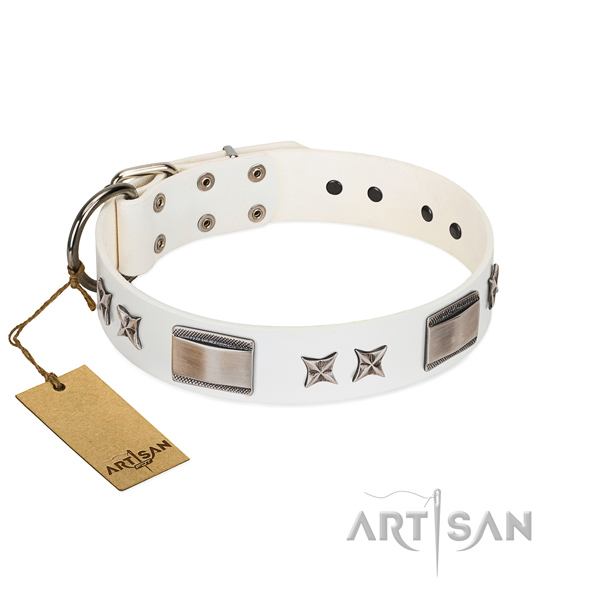 Extraordinary dog collar of full grain natural leather