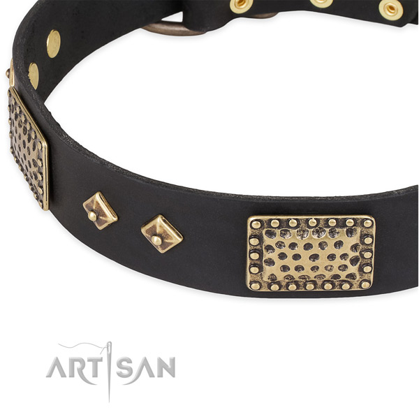 Rust resistant embellishments on leather dog collar for your four-legged friend