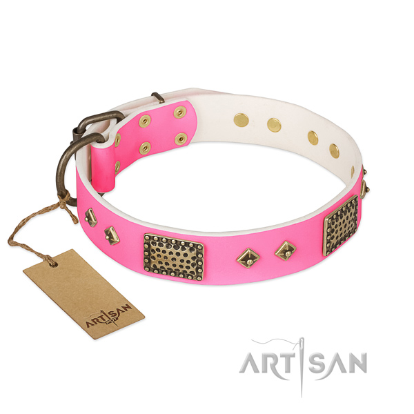 Easy to adjust full grain natural leather dog collar for daily walking your canine