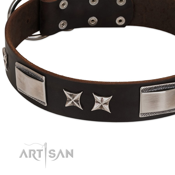 Adjustable collar of genuine leather for your impressive canine