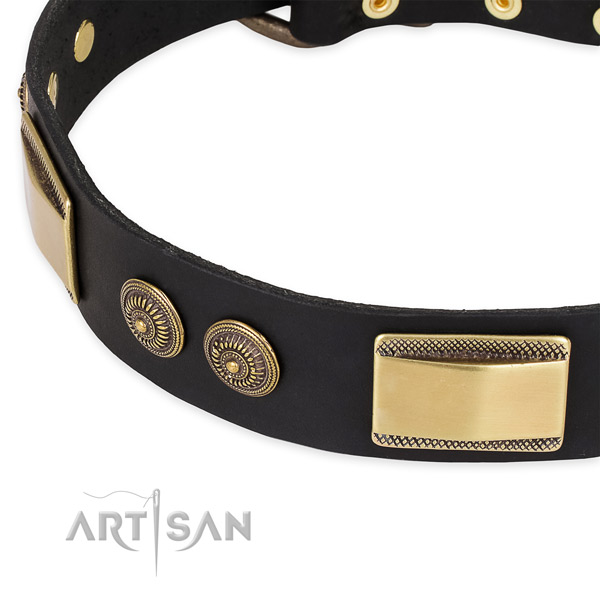 Stylish leather collar for your stylish doggie