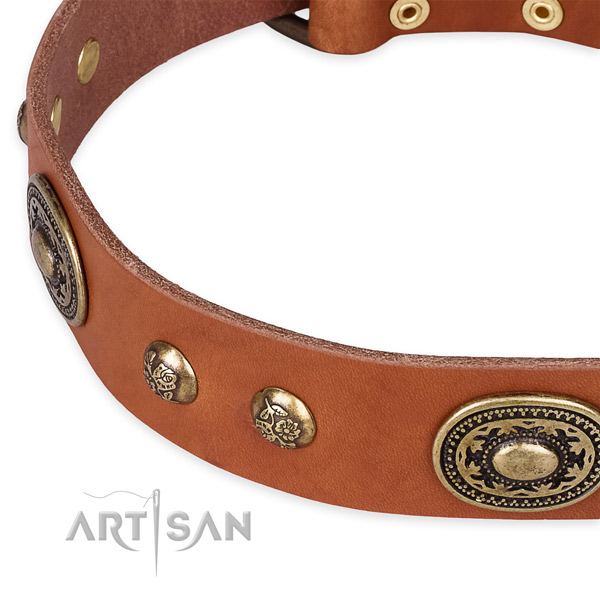 Stylish design leather collar for your lovely canine