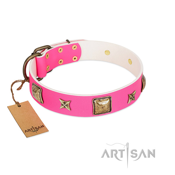Full grain natural leather dog collar of top notch material with extraordinary adornments