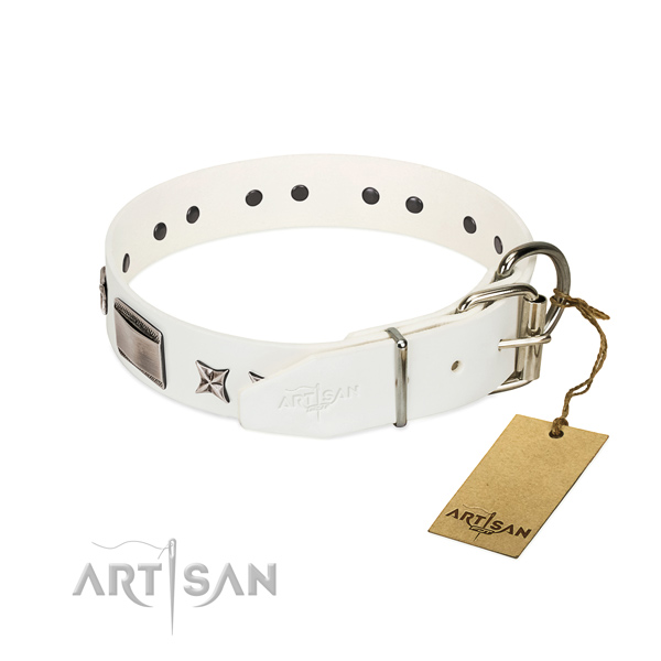 Inimitable collar of full grain natural leather for your attractive dog