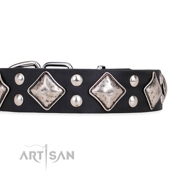 Full grain natural leather dog collar with top notch reliable embellishments