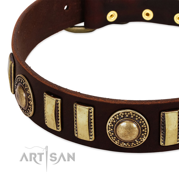 High quality full grain genuine leather dog collar with strong fittings