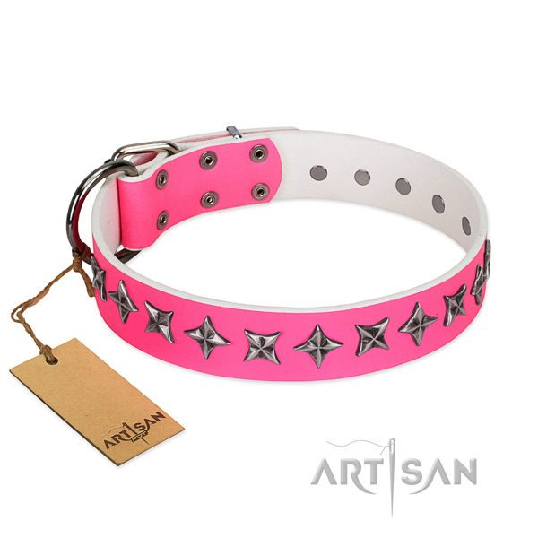 High quality full grain natural leather dog collar with extraordinary adornments