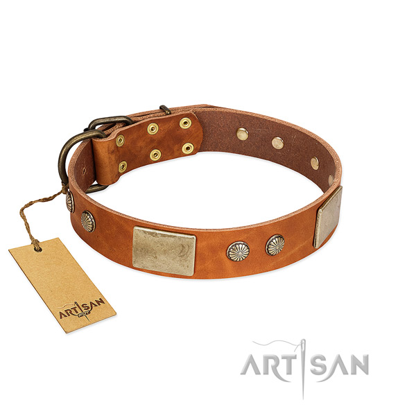 Easy adjustable leather dog collar for walking your pet