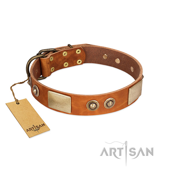 Easy adjustable leather dog collar for walking your four-legged friend