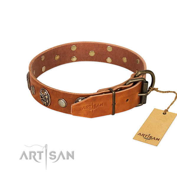 Corrosion resistant traditional buckle on natural genuine leather collar for stylish walking your canine