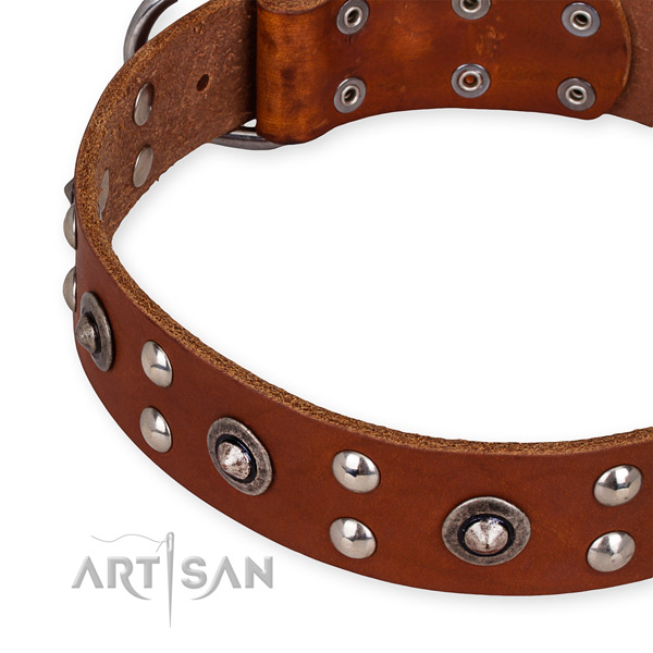 Genuine leather collar with corrosion proof fittings for your lovely canine