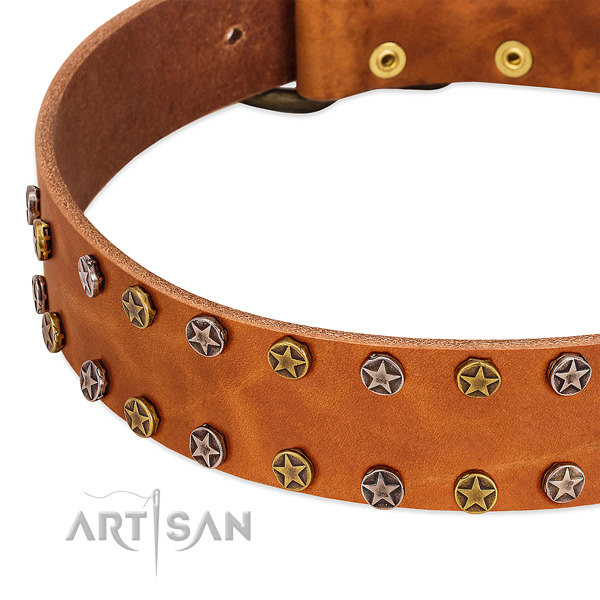 Stylish walking genuine leather dog collar with stylish decorations