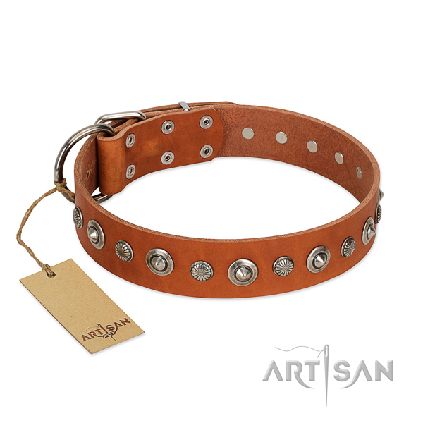 Strong natural leather dog collar with top notch studs