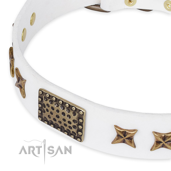 Natural genuine leather collar with strong D-ring for your stylish canine