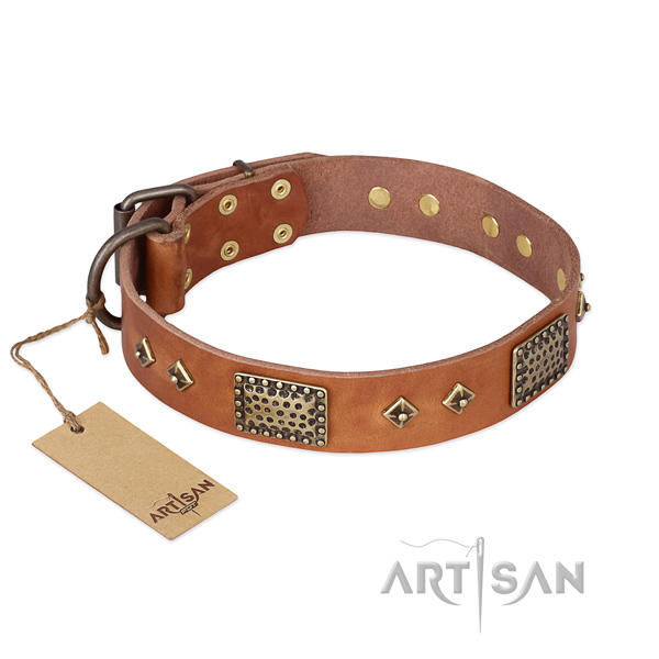 Top notch full grain leather dog collar for daily use