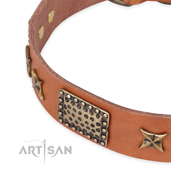 Leather collar with rust-proof fittings for your attractive canine