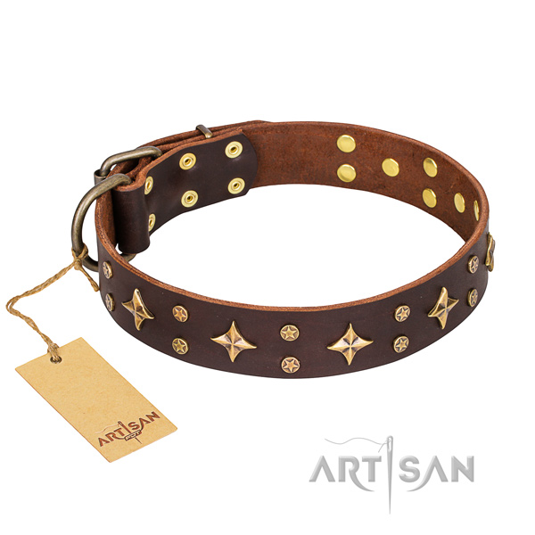 Handy use dog collar of durable full grain leather with embellishments
