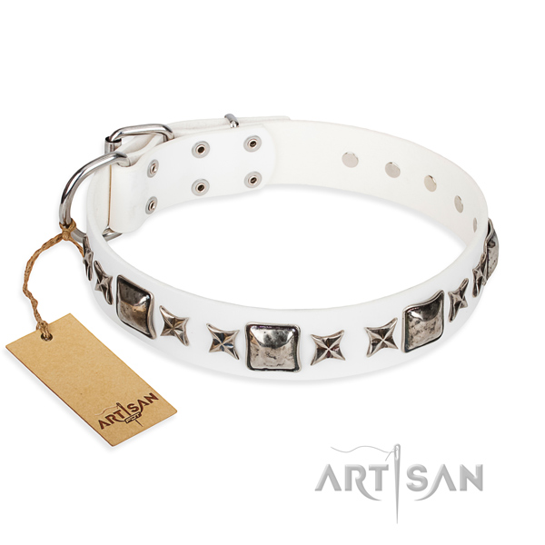 Everyday walking dog collar of durable full grain natural leather with decorations
